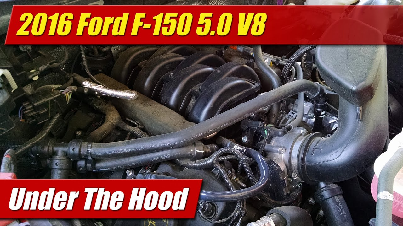 ford coyote 5 0 engine diagram under the hood 2016 ford f 150 5 0 v8 youtube  under the hood 2016 ford f 150 5 0 v8
