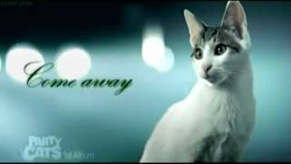 Party Cats - Come Away