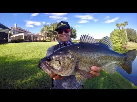 PRIVATE Ponds and BIG Bass-Orlando Florida Fishing