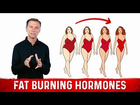Fat Burning Hormones Super Simplified (Dr. Berg)