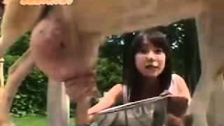 戸田恵梨香が乳しぼり体験でお尻ちらり。.mp4