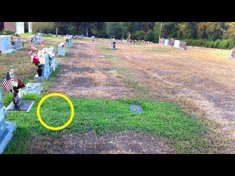 Мать не могла понять, почему трава на могиле ее сына стала зеленой. Потом она узнала, в чем причина…