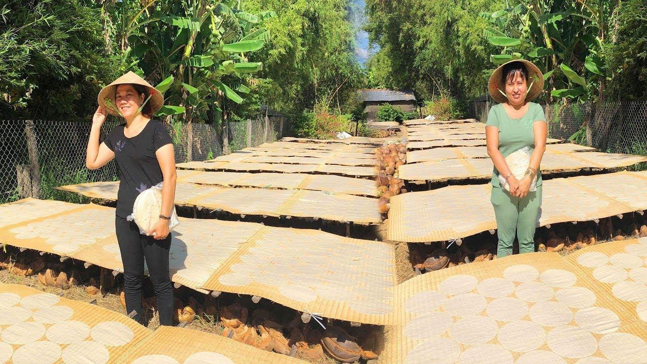 Cách  Làm Bánh Phồng sữa Dừa  Đón tết Miền quê 2019 GBMT tap 36