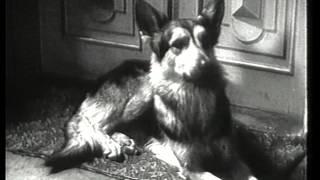 Тимур и его команда - СОЮЗДЕТФИЛЬМ - 1940 год - СССР