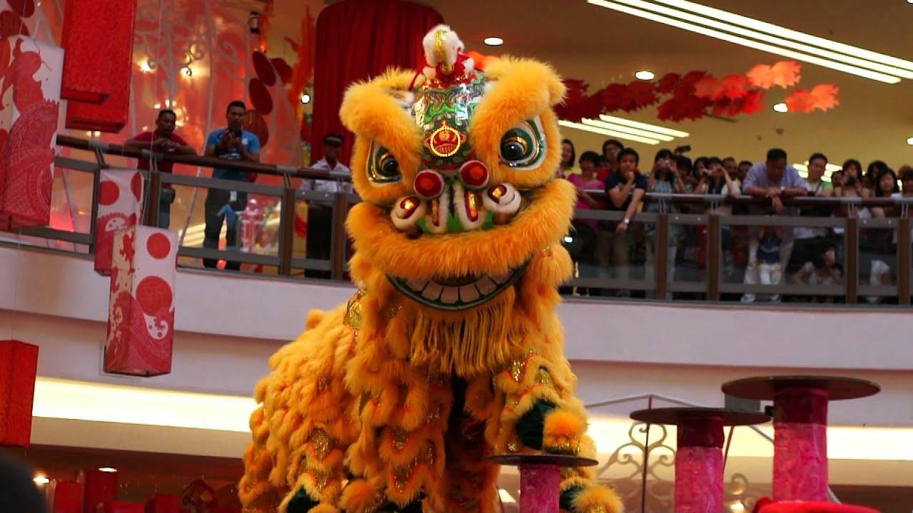 Lion Dance Video