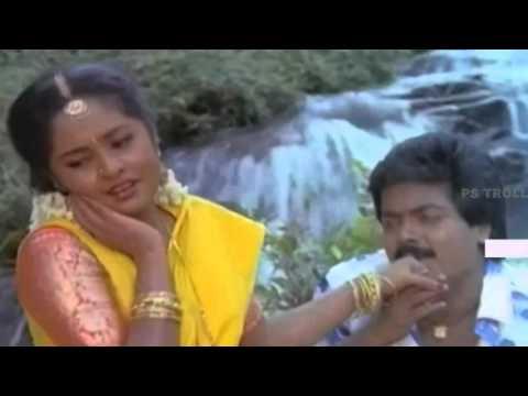 Madhulanganiye Naala-மாதுலங்கணியேநல்லமலர்-Ilaiyaraaja, S Janaki Love Duet H D Video Song