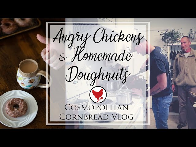 ANGRY CHICKENS & HOMEMADE DOUGHNUTS | VLOG