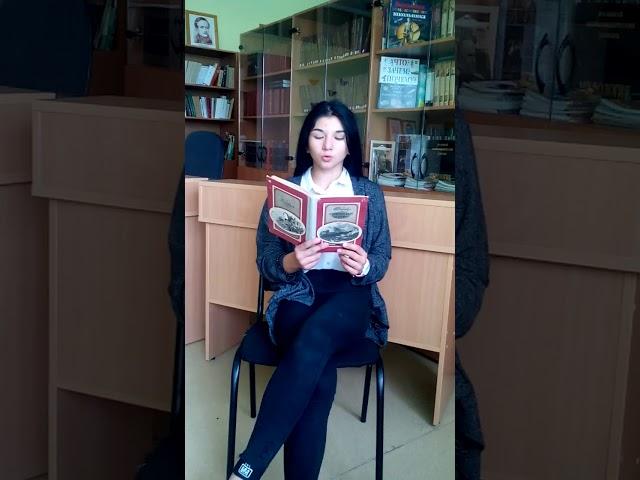 Изображение предпросмотра прочтения – ЕлизаветаМелюхаева читает произведение «Сенокос» А.Н.Майкова