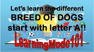 Let's learn the different Breed of Dogs starts with letter A!!!