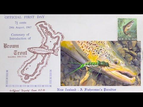 Fly Fishing Christchurch