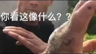 Khả năng kungfu kinh dị của võ sư Trung Quốc