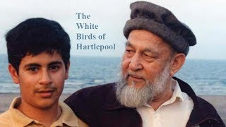 The White Birds of Hartlepool [Documentary Special]