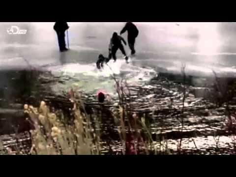 "Bear Grylls Extreme Survival Caught on Camera | Season 1 Episode 3 | ""Snow"""