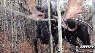 #HoytKillShot - Ralph 5 Yard Moose