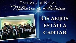 005 Os anjos estão a cantar | Música de Natal