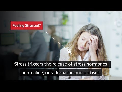 Feeling Stressed Out? There's Physio for That