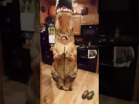 Dinosaur Costume Scares French Bulldog