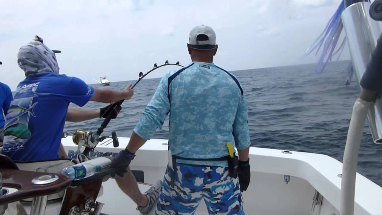 Texas offshore fishing at its best with booby trap fishing for Offshore fishing texas