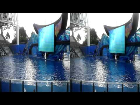 One Ocean at SeaWorld Orlando in 3D