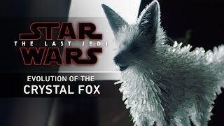 Evolution of the Crystal Fox