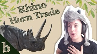 #31 Should We Legalise the Rhino Horn Trade?   The Biome Podcast