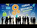 In Just 3 Minutes | Basic HRM Concepts (Human Resources Management)