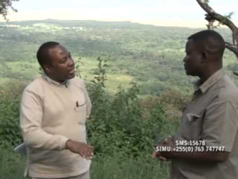 TRAVEL & TOURISM AFRICA   15 JULY 2014 SERENA LAKE MANYARA
