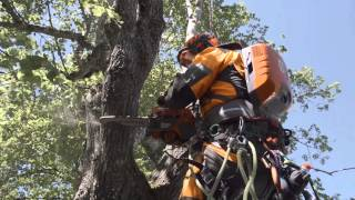 Battery powered professional chainsaw by Husqvarna