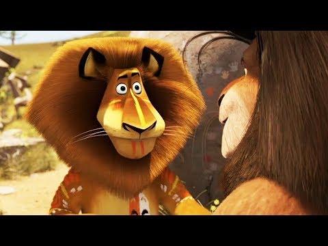 DreamWorks Madagascar | Madagascar Fight Contest | Madagascar : Escape 2 Africa | Kids Movies