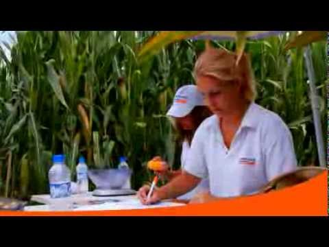 American Genetics Inc Promo Video