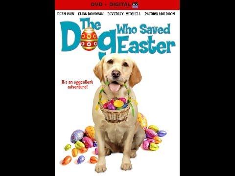 Trailer do filme The Dog Who Saved Summer