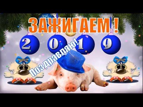 Зажигаем! Новый 2019 год! Прикольное поздравление и пожелание с новым годом! Год свиньи ! - Смотри ютуб