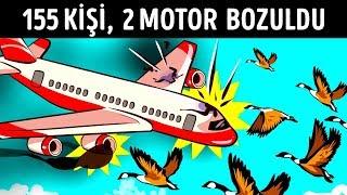 Kuşlar Uçağın Motorlarını Mahvettiğinde 155 Kişiyi Kurtaran Mucize