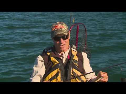 Mini Mini Metrey Barra   ESCAPE FISHING WITH ET