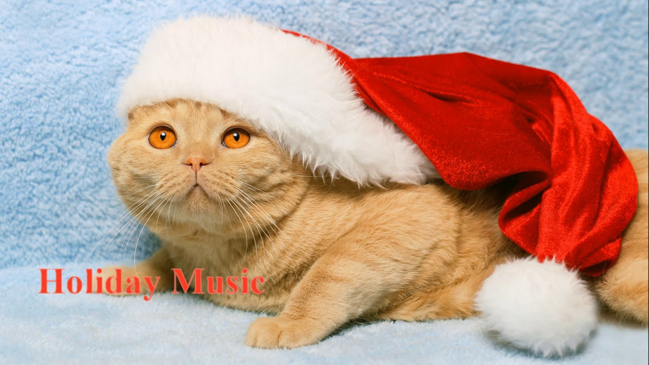 🎵 HOLIDAY MUSIC NONRELIGIOUS 30 MIN PLAYLIST CHRISTMAS 🎄 ROYALTY ...