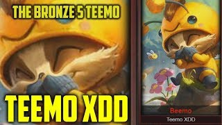 Teemo XDD- Where are they NOW?
