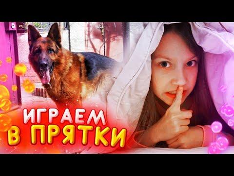 Играем в Прятки с Собакой в Своем Доме Воскресный Влог / Вики Шоу