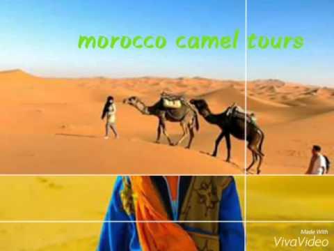 Morocco camel tours