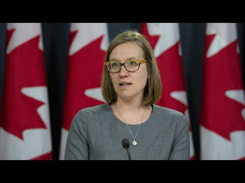 Update on Canada's assistance to Lebanon after Beirut explosion