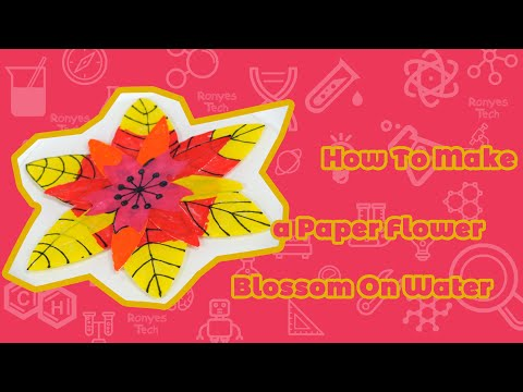 How To Make a Paper Flower Blossom On Water?