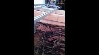 Chainsaw Slabbing Fallen Trees -- Coast Redwood