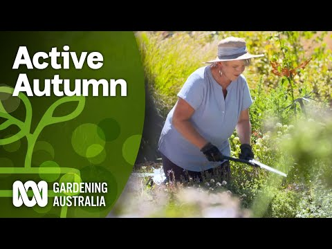 Don't slow down in Autumn, it's a great time to garden   DIY Garden Projects   Gardening Australia