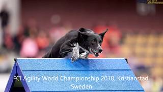 Tereza & Say at Agility World Championship & Norwegian Open 2018