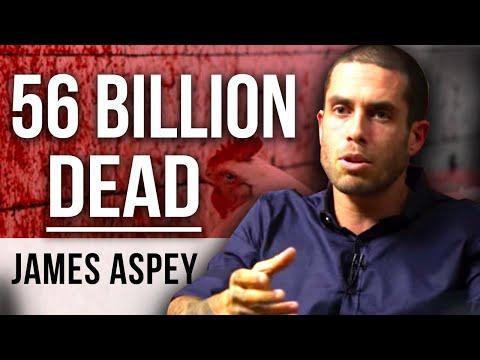 56 BILLION LAND ANIMALS DIE - Vegan Activist James Aspey