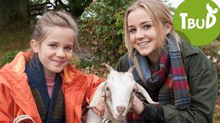 Zickenalarm (Folge 82) | Tiere bis unters Dach | SWR Kindernetz