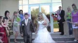 Свадьба  Алексея & Елены