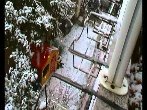 Neve ad Olbia 12 02 2012