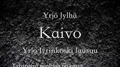 Yrjö Jylhä: Kaivo
