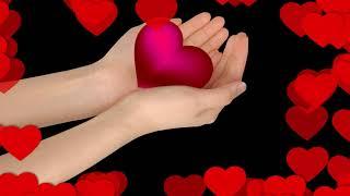 Happy Valentine's Day 2/14/2018 Feliz Dia de San Valentin !