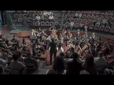 Serenade for String Orchestra Op. 48  - YES Lebanon 2017 Orchestra